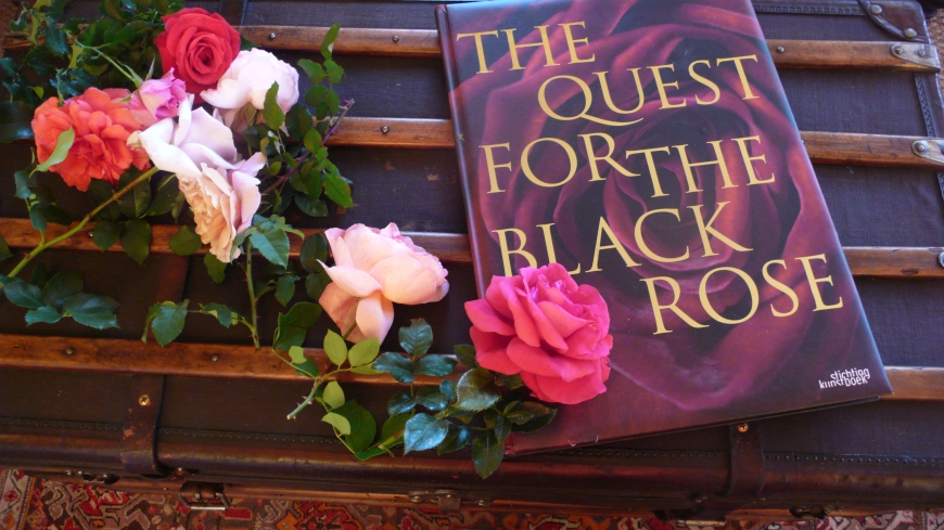 The Quest for the Black Rose, photo slimpaley.com