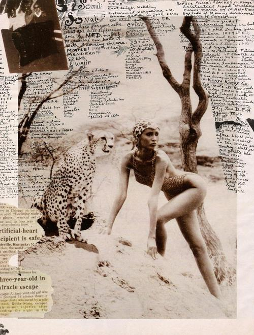 Peter Beard diaries